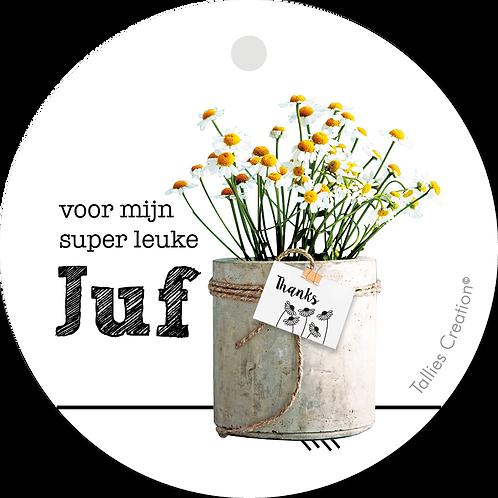 Juf - Plant - set van 5 kaarten