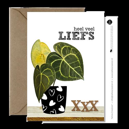 Liefs - Plant wenskaarten