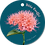 Thumbnail: Dikke knuffel - Flowerpower - set van 5 kaarten