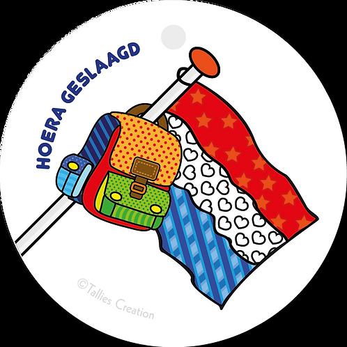 Hoera geslaagd vlag - Popart - set van 5 kaarten