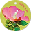 Thumbnail: Trots op jou - Flowerpower - set van 5 kaarten