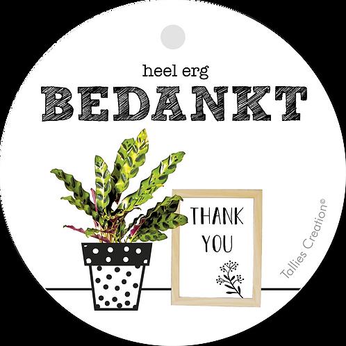 Bedankt Thank You - Plant - set van 5 kaarten