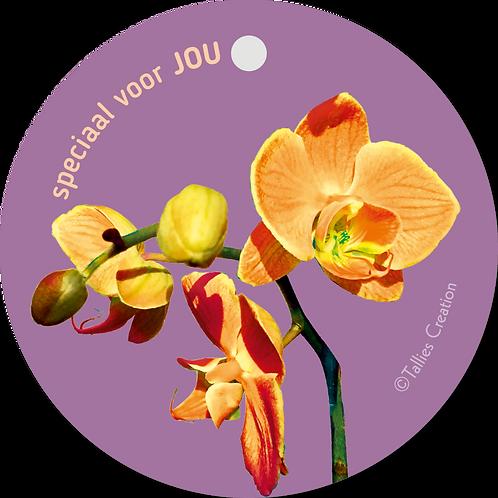 Speciaal voor jou - Flowerpower - set van 5 kaarten