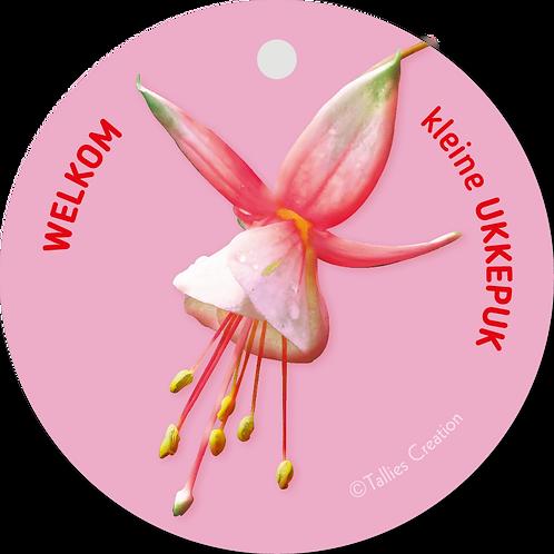 Welkom kleine ukkepuk roze - Flowerpower - set van 5 kaarten
