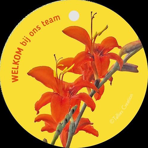 Welkom bij ons team - Flowerpower - set van 5 kaarten