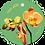 Thumbnail: Voor jou - Flowerpower - set van 5 kaarten