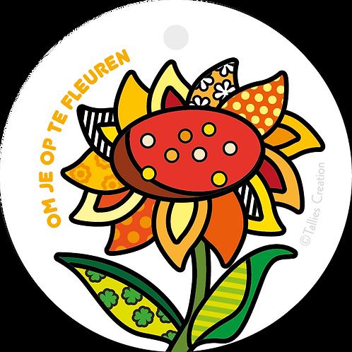 Om je op te fleuren - Popart - set van 5 kaarten