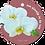 Thumbnail: Steuntje in de rug - Flowerpower - set van 5 kaarten