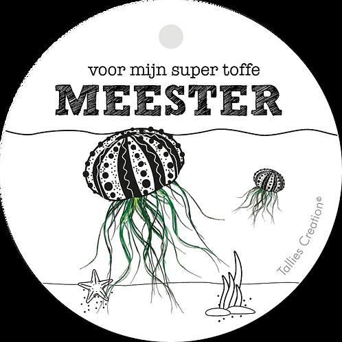 Meester - Plant - set van 5 kaarten