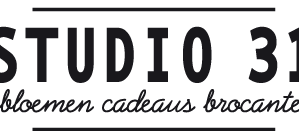 studio31-cropped2.png