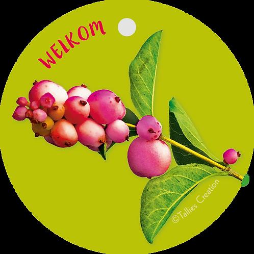 Welkom - Flowerpower - set van 5 kaarten