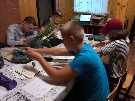 Ребята школьного лесничества #Бересклет# начали работу в экологическом лагере. ДЕНЬ ПЕРВЫЙ.