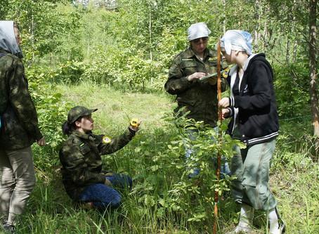 Юные лесоводы стали лидерами областного конкурса