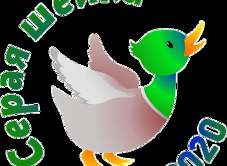 Приглашаем на всероссийский учёт зимующих водоплавающих птиц 18-19 января 2020 г.
