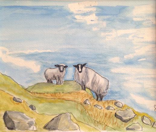 Hill Sheep on Bearra, West Cork