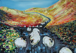 Sheep Highway