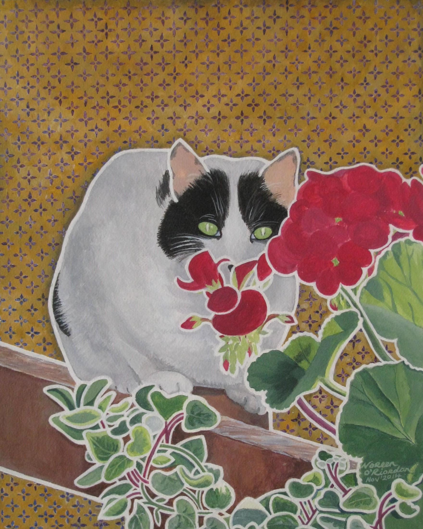 Absract cat