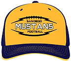 Football Hat.png