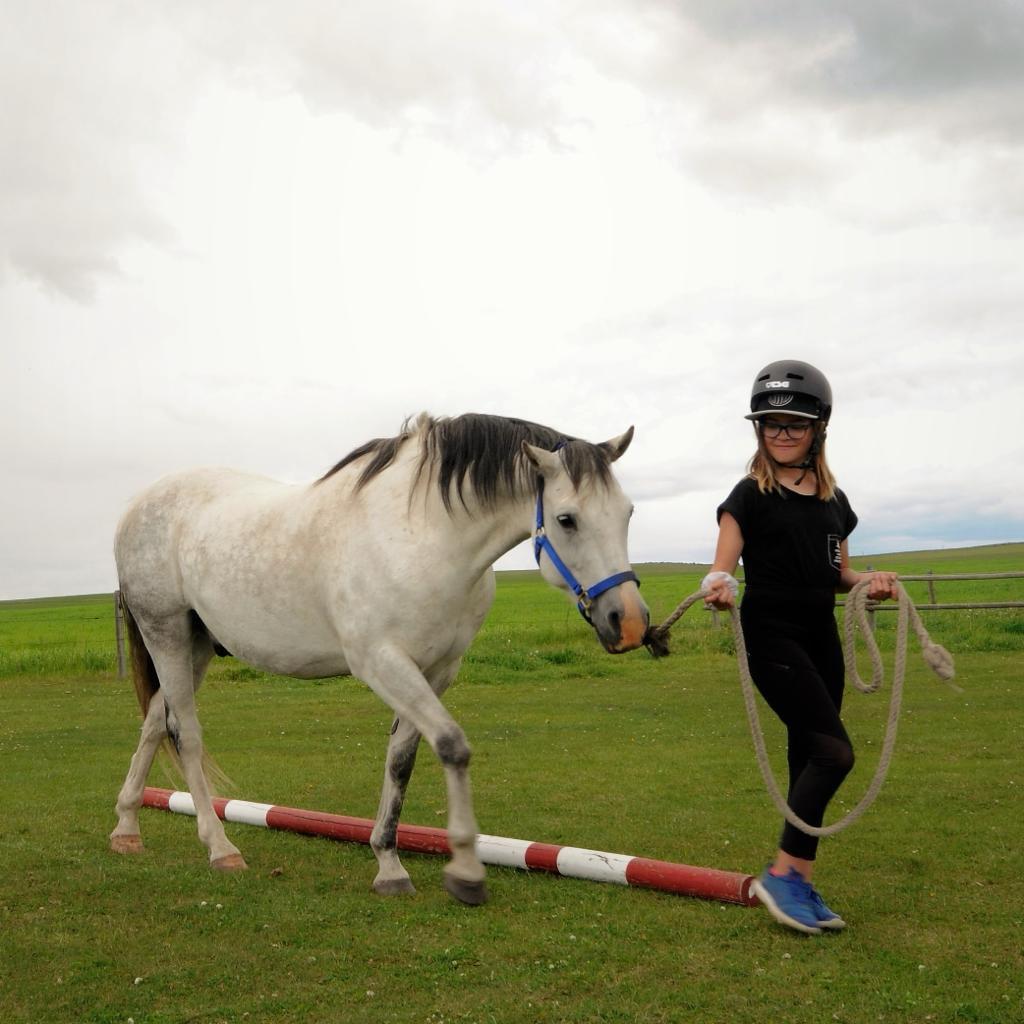 Mindful Equine Afterschool Program