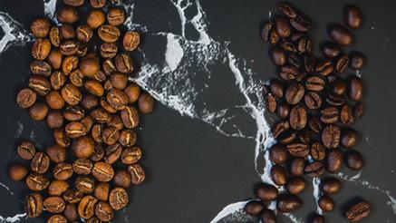 Café Arabica ou café Robusta ?