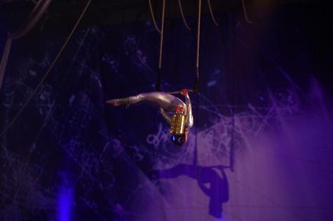 Solo Static Trapeze - Aircraft Circus
