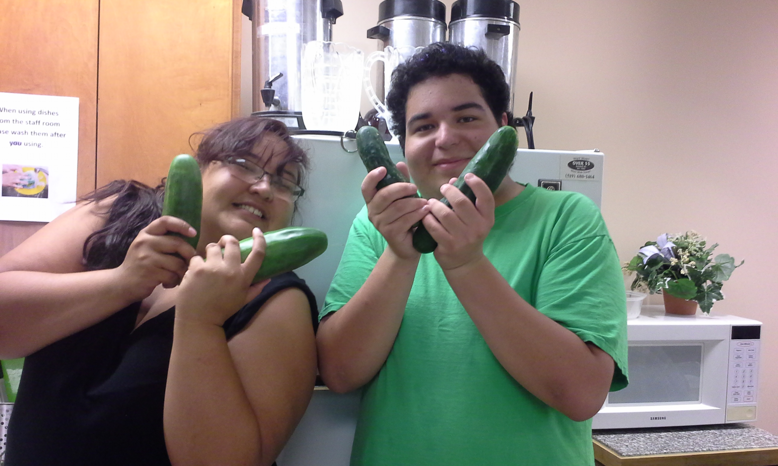 cucumbers from dillabough