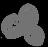 procesados-gris-uai-258x255.png