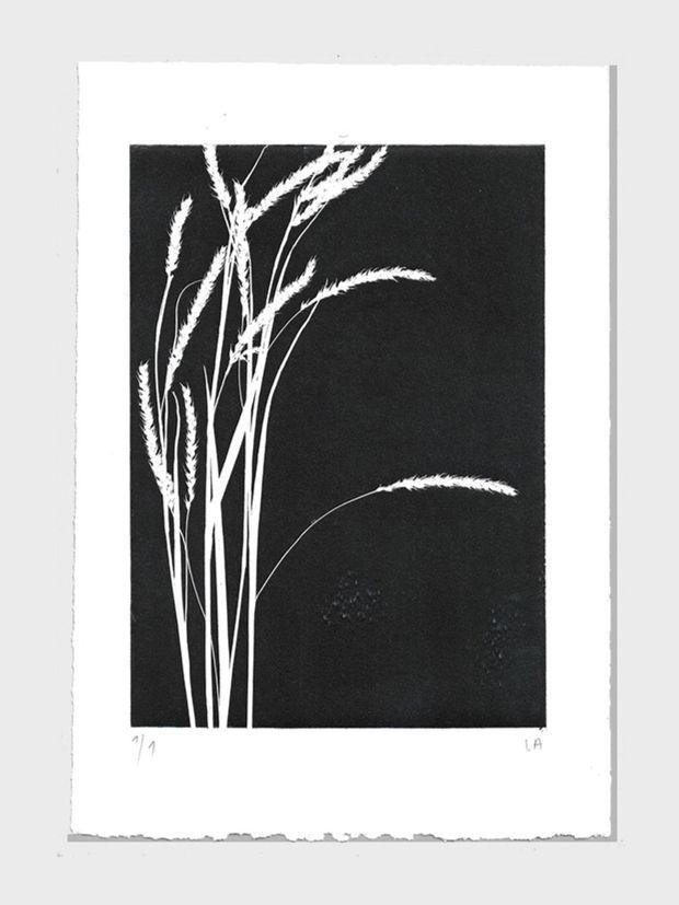 Gräser schwarz