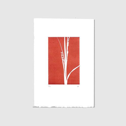 Gräser Monotypie