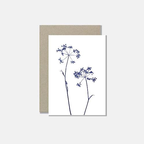 Klappkarte A6 - Kerbelblüte weiss blau
