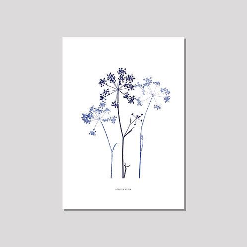 Poster A3 - Trio Kerbel weiss blau