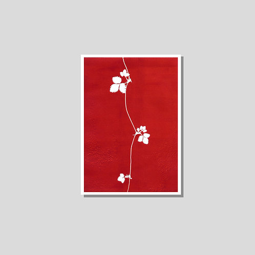 Klappkarte A6 - Erdbeere rot weiss