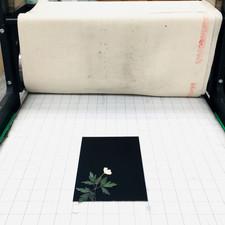 Printmakingprocess