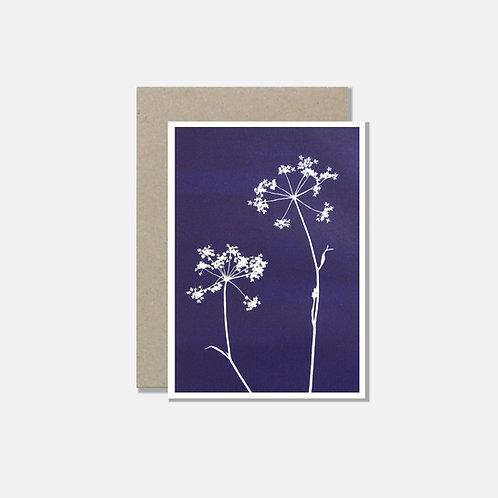 Klappkarte A6 - Kerbelblüte blau weiss