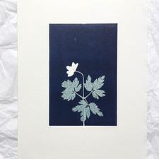 Original Natural Print