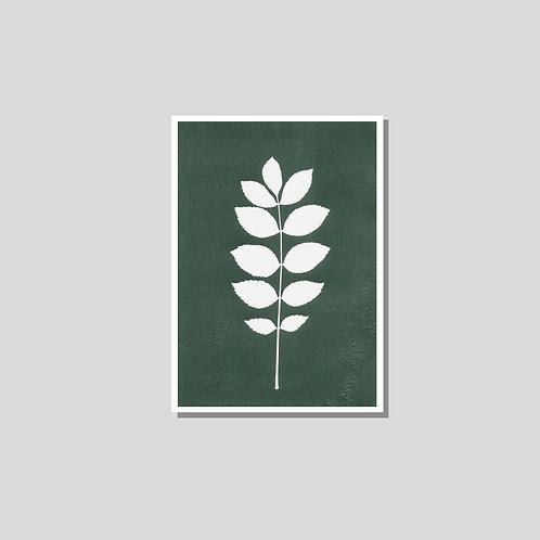 Klappkarte A6 - Esche grün weiss