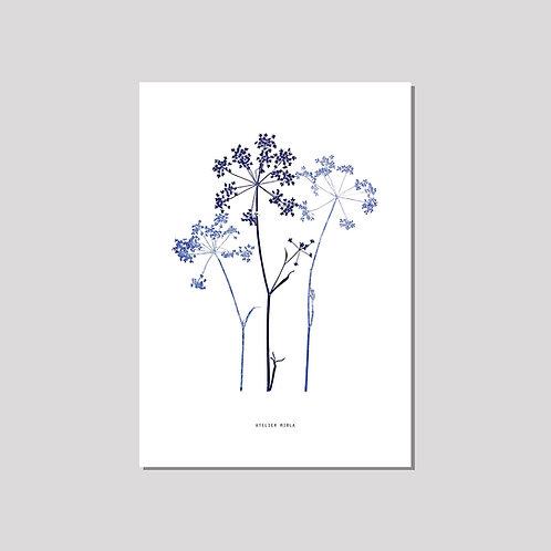 Poster A4 - Kerbel Trio blau