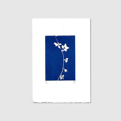 Blauer Zweig