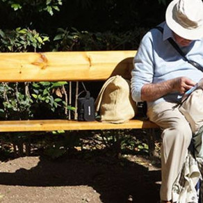 De nombreux Français de l'étranger n'ont pu toucher leur retraite suite à un bug