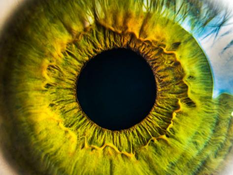 Vos yeux révèlent quasiment tous les secrets sur votre identité