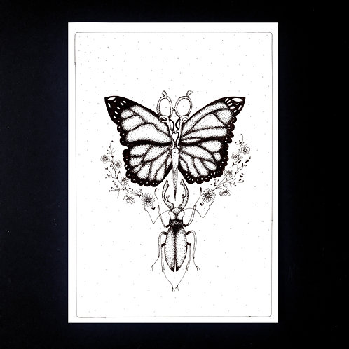 INKED NATURE | The Butterfly Scissors