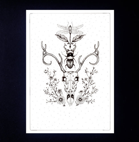 INKED NATURE   The Deer and Beetle