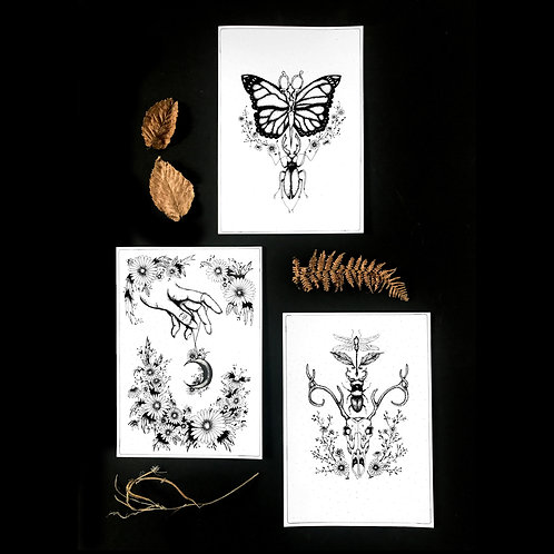 INKED NATURE | The Collection