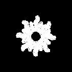Sunshine Logo White.png