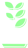 Plant-Icon2.png