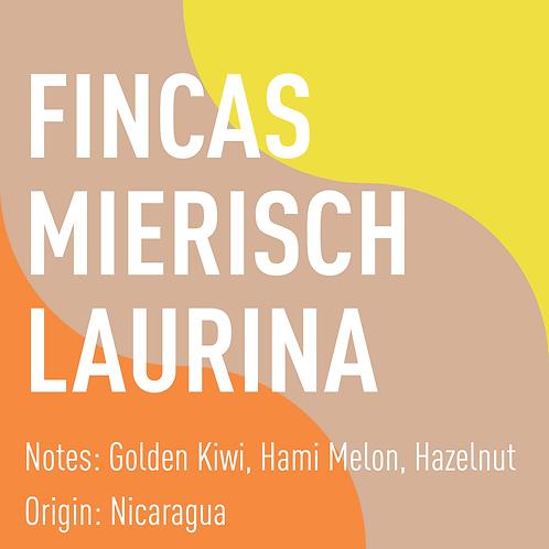 Nicaragua Fincas Mierisch Laurina (notes: Golden Kiwi, Hami Melon, Hazelnut)