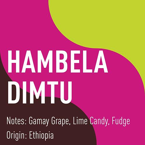 Ethiopia Hambela Dimtu (notes: gamay grape, lime candy, fudge)