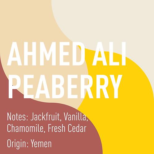 Yemen Ahmed Ali Peaberry (notes: Jackfruit, Vanilla, Chamomile, Fresh Cedar)