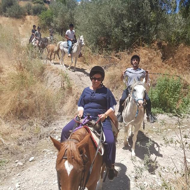 טיול סוסים קייצי בגליל למשפחות וחברות