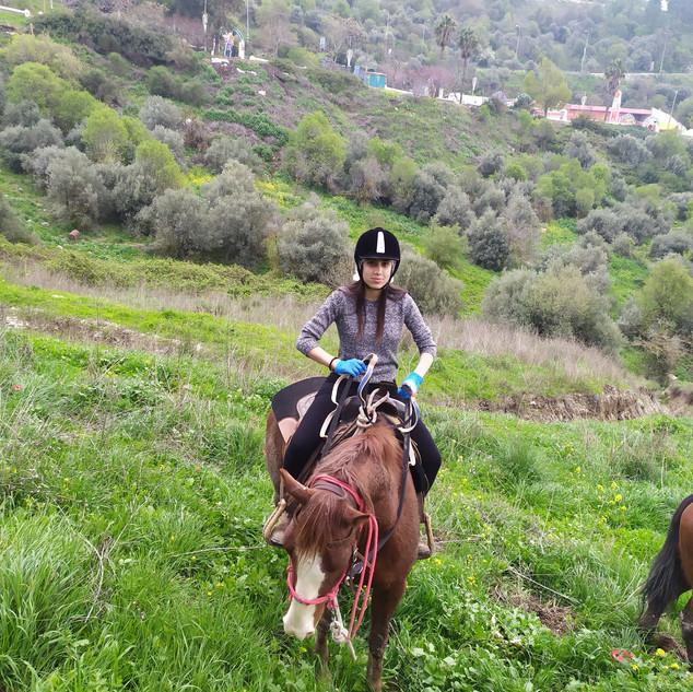 טיול סוסים חורפי בגליל